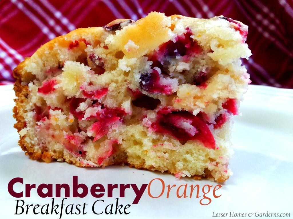 fresh cranberry cake bread