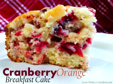 fresh cranberry cake bread